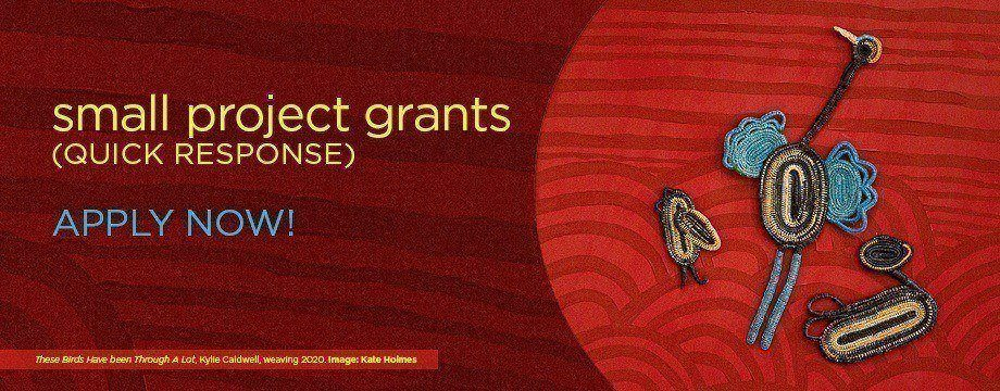 Small Project Grants (Quick Response) for Individuals guidelines